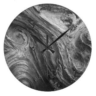 USA, Washington State. Douglass Fir Clocks
