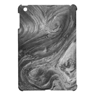 USA, Washington State. Douglass Fir iPad Mini Covers