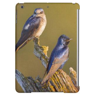 USA, Washington State. Female And Male Purple Cover For iPad Air