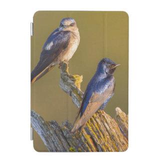 USA, Washington State. Female And Male Purple iPad Mini Cover