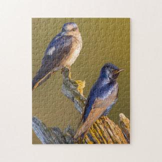USA, Washington State. Female And Male Purple Jigsaw Puzzle