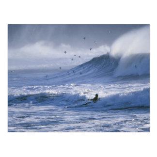 USA Washington State La Push Man kayak Postcards