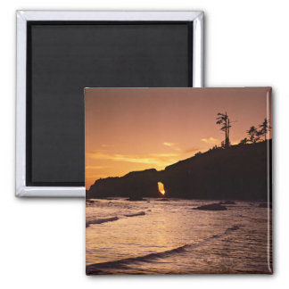 USA, Washington State, Olympic National Park. 2 Square Magnet