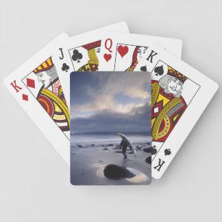 USA Washington State Olympic National Park Card Deck