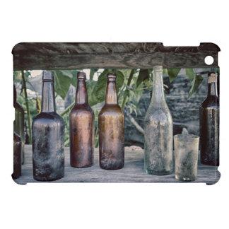 USA, Washington State, Port Townsend 2 iPad Mini Cases