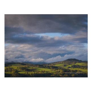 USA, Washington State, Scenics view of green Postcard