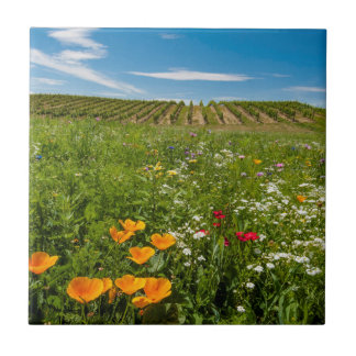 USA, Washington, Walla Walla. Wildflowers Tile