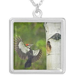 USA, Washington, Yakima. Male pleated Silver Plated Necklace