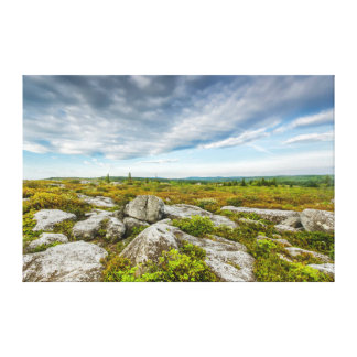 USA, West Virginia, Davis. Landscape In Dolly Canvas Print