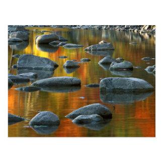 USA, West Virginia, Spruce Knob-Seneca Rocks 3 Postcard