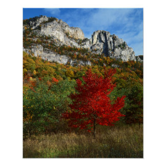 USA, West Virginia, Spruce Knob-Seneca Rocks Poster