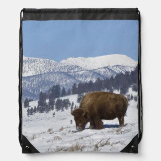 USA, WY, Yellowstone NP, American Bison Bison Drawstring Bag