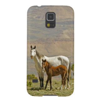 USA, Wyoming, Carbon County. Wild horse mare Galaxy S5 Case