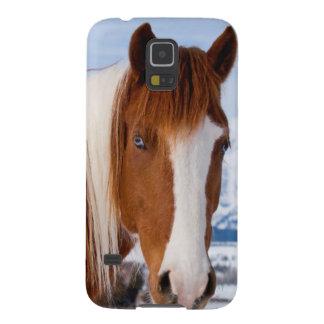 USA, Wyoming, Grand Teton National Park 3 Galaxy S5 Cases