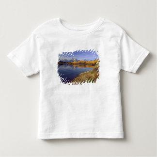 USA, Wyoming, Grand Teton National Park. Mt. 2 T-shirt