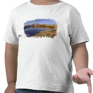 USA, Wyoming, Grand Teton National Park. Mt. 2 Tee Shirts