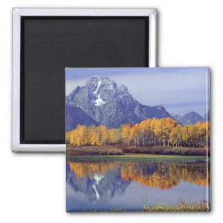 USA, Wyoming, Grand Teton National Park. Mt. Square Magnet