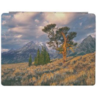 USA, Wyoming, Grand Teton NP. Sunrise greets a iPad Cover