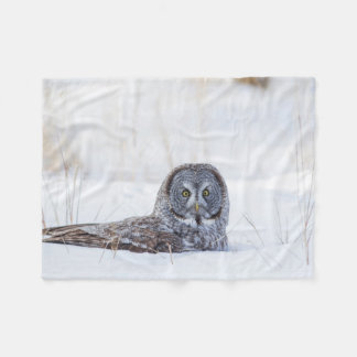 USA, Wyoming, Great Gray Owl sitting in snow Fleece Blanket