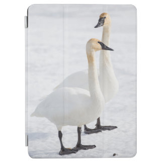 USA, Wyoming, National Elk Refuge, Trumpeter 2 iPad Air Cover