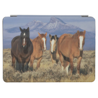 USA, Wyoming, near Cody Group of horses, Heart iPad Air Cover
