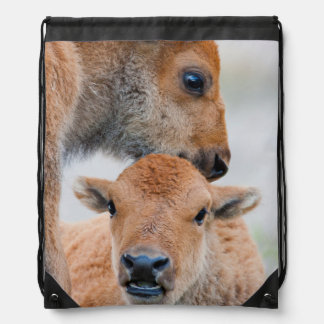 USA, Wyoming, Yellowstone National Park, A bison Drawstring Backpack