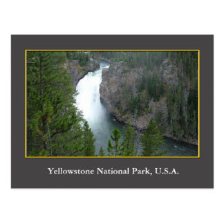 USA Yellowstone National Park Postcard