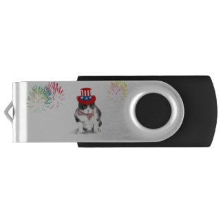 USB Flash Drive featuring Felix the cat
