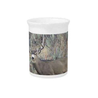 Utah mule deer buck beverage pitcher