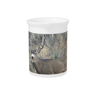 Utah mule deer buck pitcher