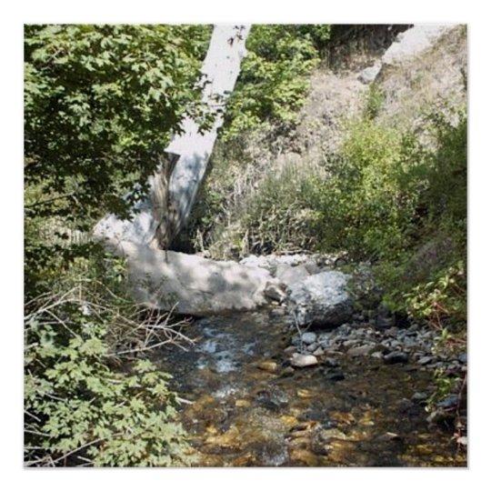 Utah Nature Photo Poster