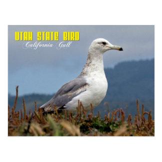 Utah State Bird - California Gull Postcard