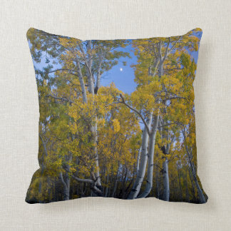Utah. USA. Aspen Trees And Moon At Dusk Throw Pillow
