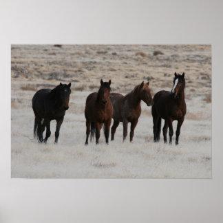Utah Wild Mustangs Poster