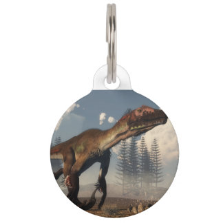 Utahraptor dinosaur in the desert - 3D render Pet Tag
