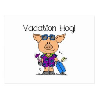Vacation Hog Post Card