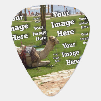 Vacation Image Template Guitar Pick