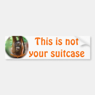 Vacation Suitcase Identification Tags Bumper Sticker