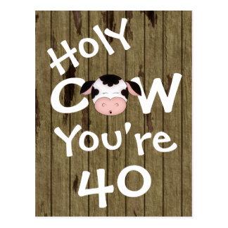 Vache sainte drôle vous êtes carte postale de 40 a