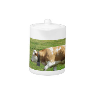 Vache simple dans un pâturage alpin