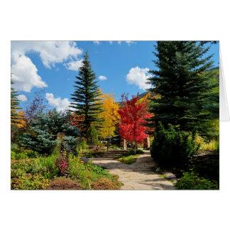 Vail Autumn Card