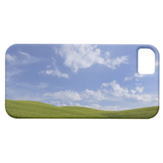 Val d'Orcia, Tuscany, Italy iPhone 5 Cover