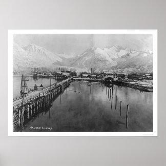 Valdez, Alaska Birdseye 1905 Poster