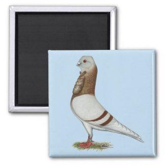 Valencian Figurita Pigeon Magnet