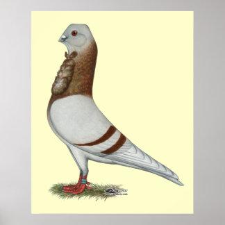 Valencian Figurita Pigeon Poster