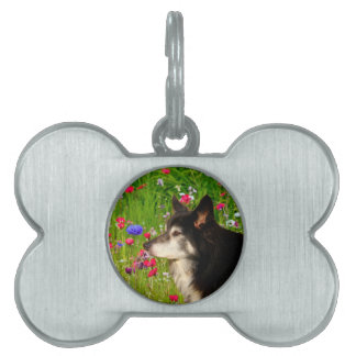 Valentine Border Collie with beautiful flowers Pet Name Tag