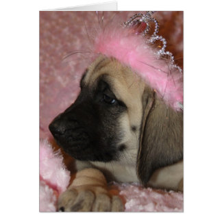 Valentine Mastiff puppy with a crown Card
