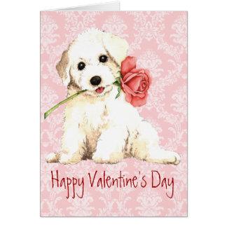 Valentine Rose Bichon Card