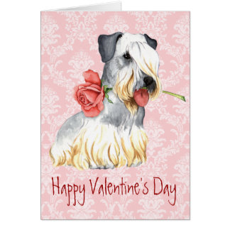 Valentine Rose Cesky Terrier Card