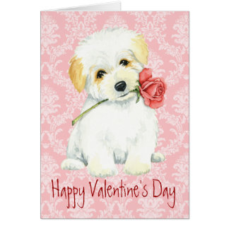 Valentine Rose Coton Card